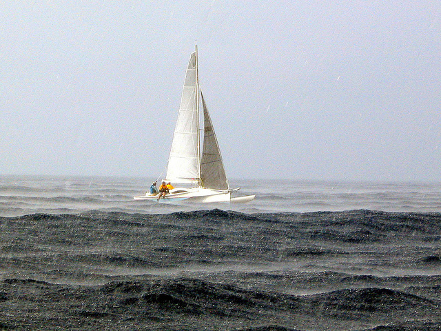 ride the wave sailboat